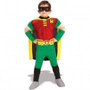 Robin Fancy Dress Costume