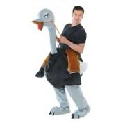 Step In Ostrich